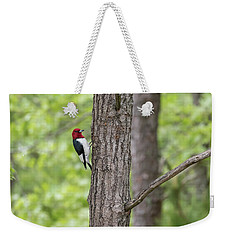 Red-headed Woodpecker 2017-1 Weekender Tote Bag by Thomas Young