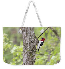 Red-headed Woodpecker 2017-2 Weekender Tote Bag by Thomas Young