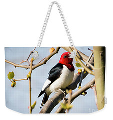 Weekender Tote Bag featuring the photograph Red-headed Woodpecker At A Glace  by Ricky L Jones