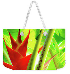 Weekender Tote Bag featuring the photograph Red Heliconia by D Davila