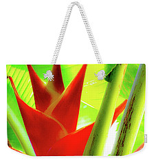 Weekender Tote Bag featuring the photograph Red Heliconia Plant by D Davila