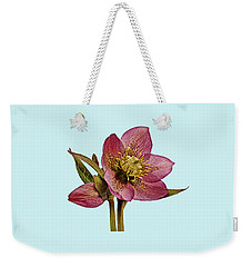 Red Hellebore Blue Background Weekender Tote Bag