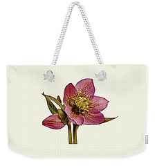 Red Hellebore Cream Background Weekender Tote Bag