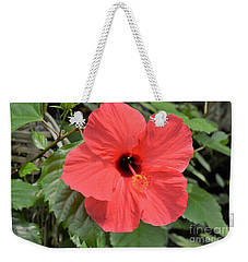 Weekender Tote Bag featuring the photograph Red Hibiscus by James Fannin