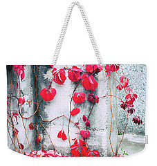 Weekender Tote Bag featuring the photograph Red Ivy Leaves by Silvia Ganora