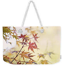 Weekender Tote Bag featuring the photograph Red Japanese Maple Leaves by Cindy Garber Iverson