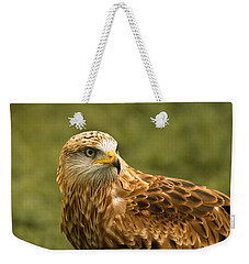 Weekender Tote Bag featuring the photograph Red Kite by Scott Carruthers