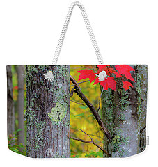 Weekender Tote Bag featuring the photograph Red Leaves by Gary Lengyel