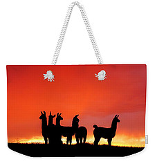 Red Llama Sunset 1 Weekender Tote Bag