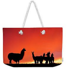 Red Llama Sunset 2 Weekender Tote Bag