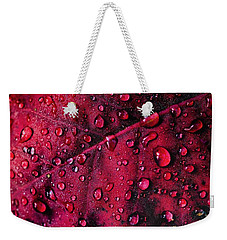 Weekender Tote Bag featuring the photograph Red Morning by Gene Garnace