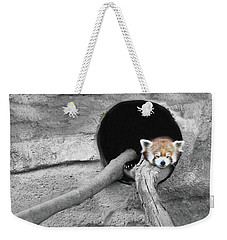 Red Panda Sleeping Weekender Tote Bag
