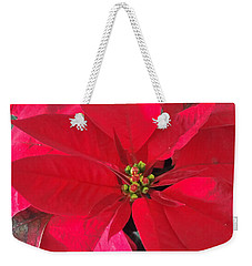 Red Poinsettia Weekender Tote Bag by Pamela Walton