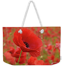 Red Poppies 3 Weekender Tote Bag