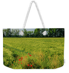Red Poppies On A Green Wheat Field Weekender Tote Bag