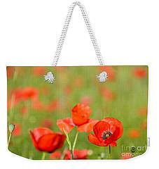 Red Poppy In A Field Of Poppies Weekender Tote Bag
