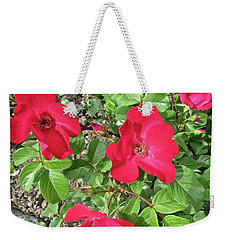 Weekender Tote Bag featuring the photograph Red Roses by Stephanie Moore