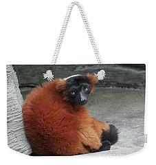 Red Ruffed Lemur Weekender Tote Bag
