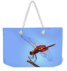 Red Saddlebag Dragonfly Weekender Tote Bag