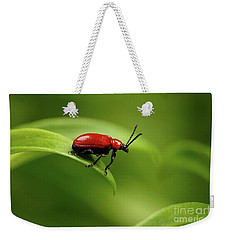 Red Scarlet Lily Beetle On Plant Weekender Tote Bag