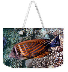 Red Sea Sailfin Tang 3 Weekender Tote Bag