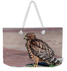 Red-shouldered Hawk Weekender Tote Bag