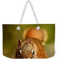 Red Squirrel   Weekender Tote Bag by Cale Best