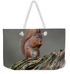 Red Squirrel Nibbling A Nut Weekender Tote Bag