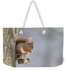 Red Squirrel On Tree Fungus Weekender Tote Bag