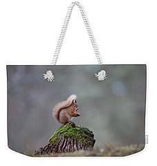 Red Squirrel Peeling A Hazelnut Weekender Tote Bag