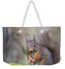 Red Squirrel - Scottish Highlands #26 Weekender Tote Bag