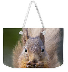 Red Squirrel - Scottish Highlands #28 Weekender Tote Bag
