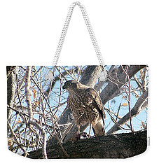 Red Tail Hawk Weekender Tote Bag