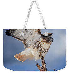 Weekender Tote Bag featuring the photograph Red Tail Hawk Perch by Bill Wakeley