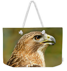Weekender Tote Bag featuring the photograph Red-tailed Hawk Close-up by Ann Bridges
