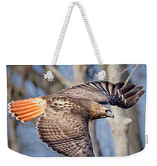 Weekender Tote Bag featuring the photograph Red Tailed Hawk Flying by Bill Wakeley
