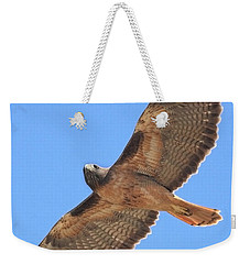 Red Tailed Hawk In Flight Weekender Tote Bag