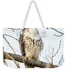 Red-tailed Hawk With Full Crop Weekender Tote Bag by Ricky L Jones