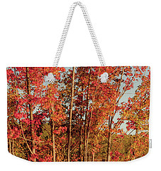 Weekender Tote Bag featuring the photograph Red Trees by Iris Greenwell