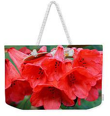 Red Trumpet Rhodies Weekender Tote Bag