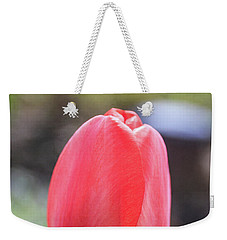 Weekender Tote Bag featuring the photograph Red Tulip Square by Edward Fielding