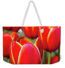 Red And Yellow Tulips I Weekender Tote Bag