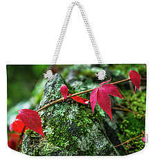 Weekender Tote Bag featuring the photograph Red Vine by Bill Pevlor