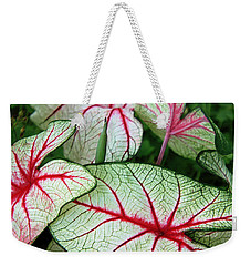 Red White And Green Weekender Tote Bag
