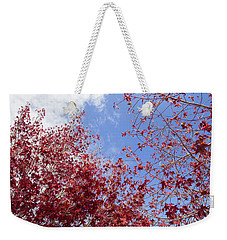 Weekender Tote Bag featuring the photograph Red White Blue Colors Of The Nature by Jingjits Photography