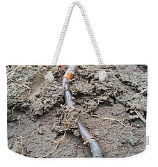 Weekender Tote Bag featuring the photograph Red Wiggler by Robert Knight