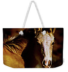 Red Willow Pony Lx Weekender Tote Bag