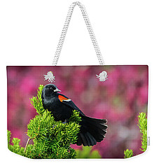 Red Winged Blackbird With Crabapple Blossoms Weekender Tote Bag