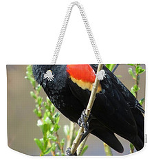 Red-winged Perch Weekender Tote Bag