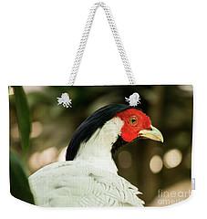 Redheaded Bird Portrait. Weekender Tote Bag